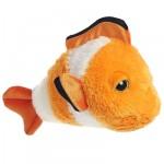 Aurora Clown Round Fish - 10 inch