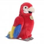 Aurora Macaw Parrot
