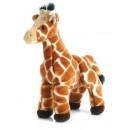 Aurora Zenith Giraffe