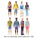 Barbie Fashionistas Boy Doll Assortment