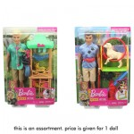Barbie Ken Doll Playset Assortment