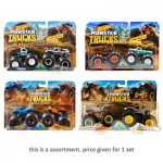 Hot Wheels Monster Trucks Demolition Doubles Assortment